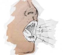 consulta da voz